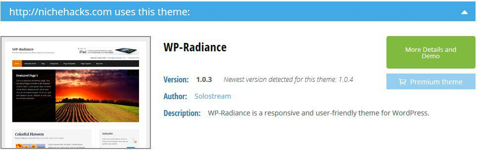 Radiance WordPress Theme Detected