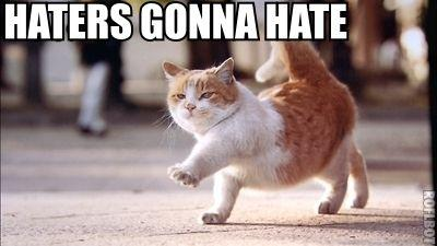 hatersgonnacat