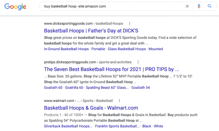 google search results basketball hoops minus amazon