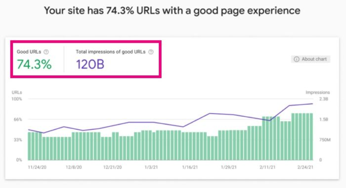 Page Experience Report - Google Search Console