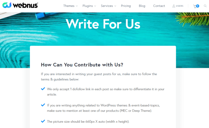 Write For Us Page Example